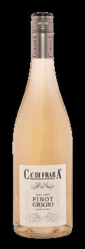 Pinot Grigio 2015 - Oltrepò Pavese DOP 2015- Ca' di Frara