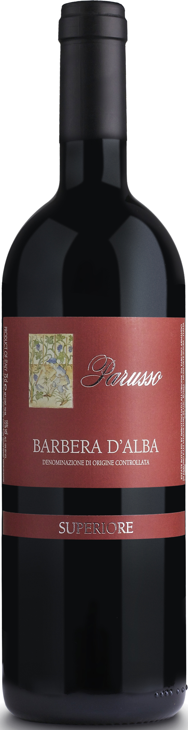 Barbera d'Alba Sup. Etichetta Rossa DOC 2015 Doppia Magnum 3 L